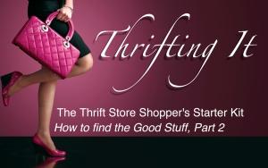 thriftingitlogo2