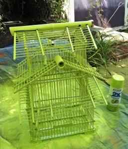 birdcageafter