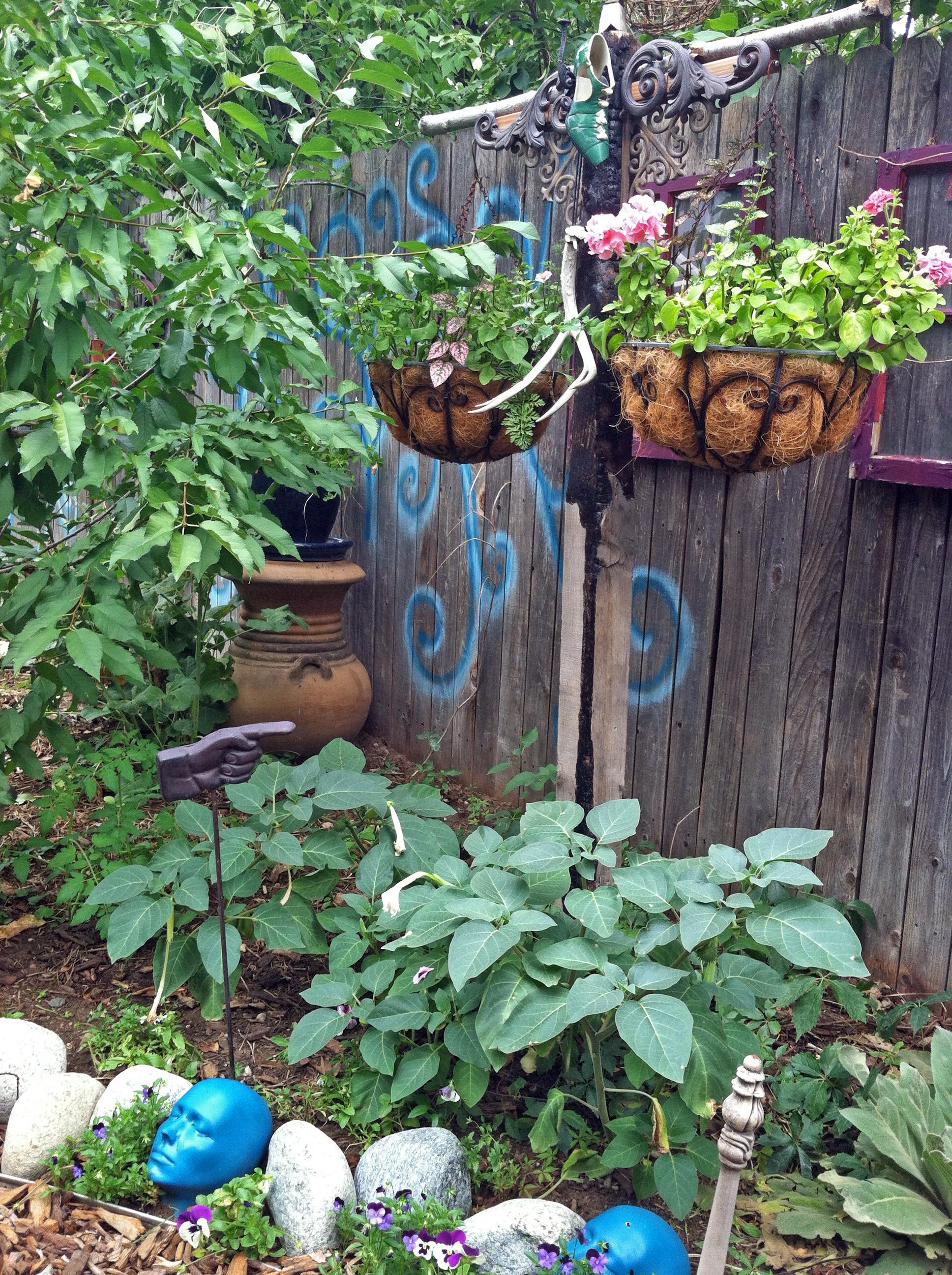 Part 2 Big Crazy Bohemian Garden It S Not Mine It S