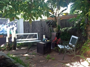 backyard7sept2013