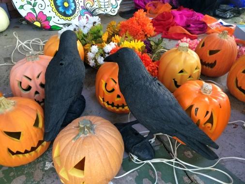 halloween2014porchcrowsbefore