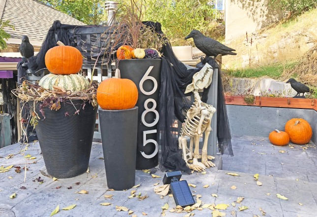 Halloweenout2018d