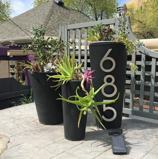 frontplanterssucculents9