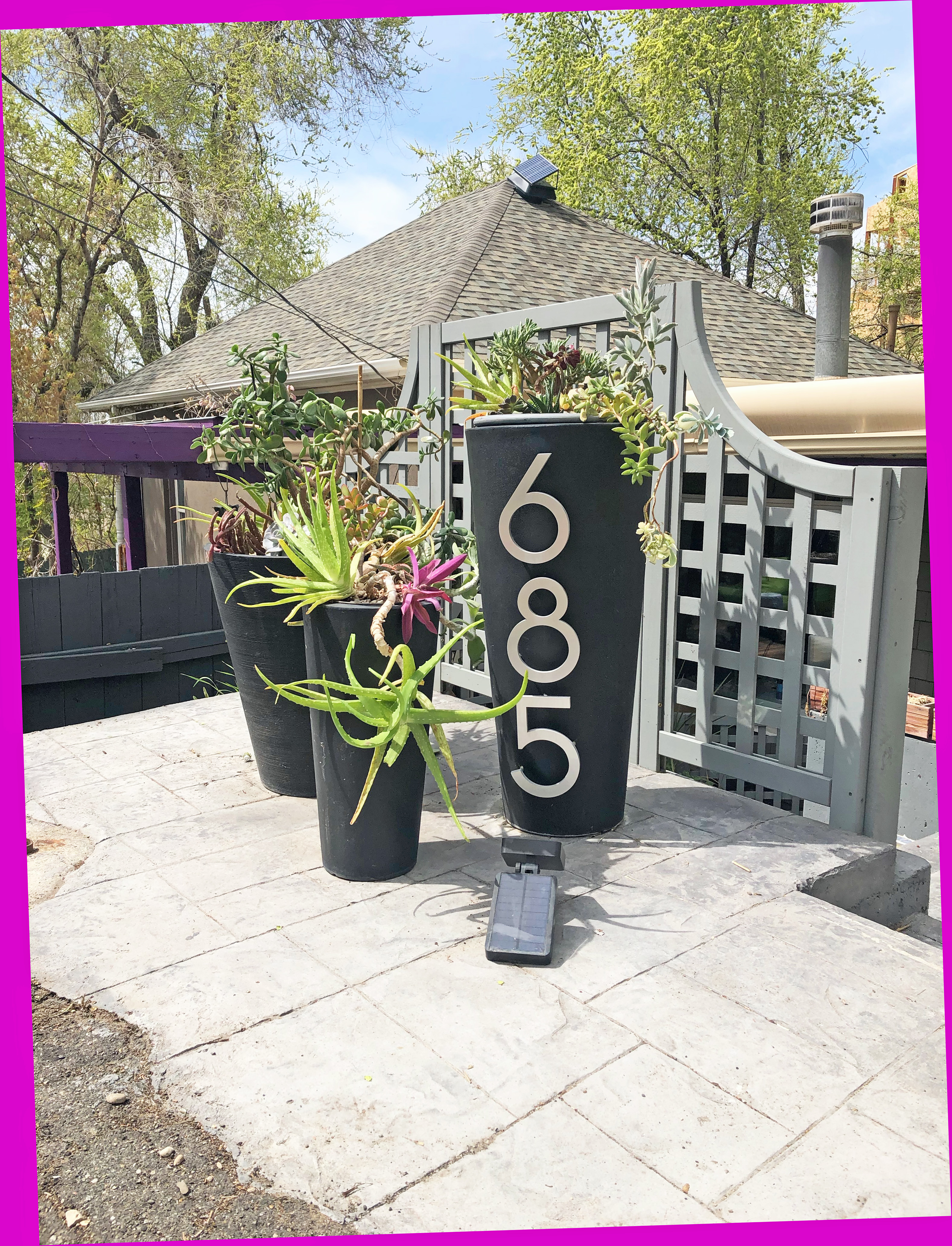 frontplanterssucculents5