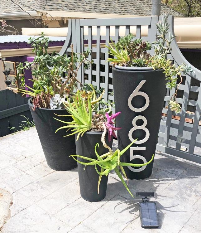 frontplanterssucculents7